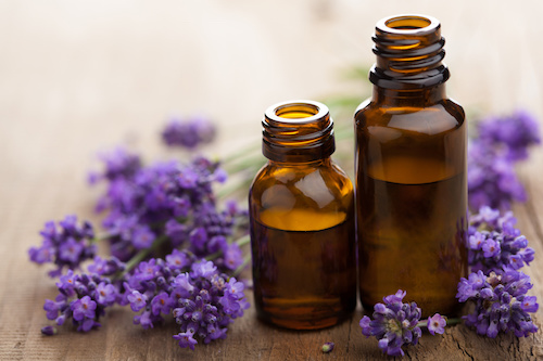 essential oil lavender flowers